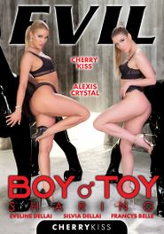 Boy Toy Sharing Dvd Cover